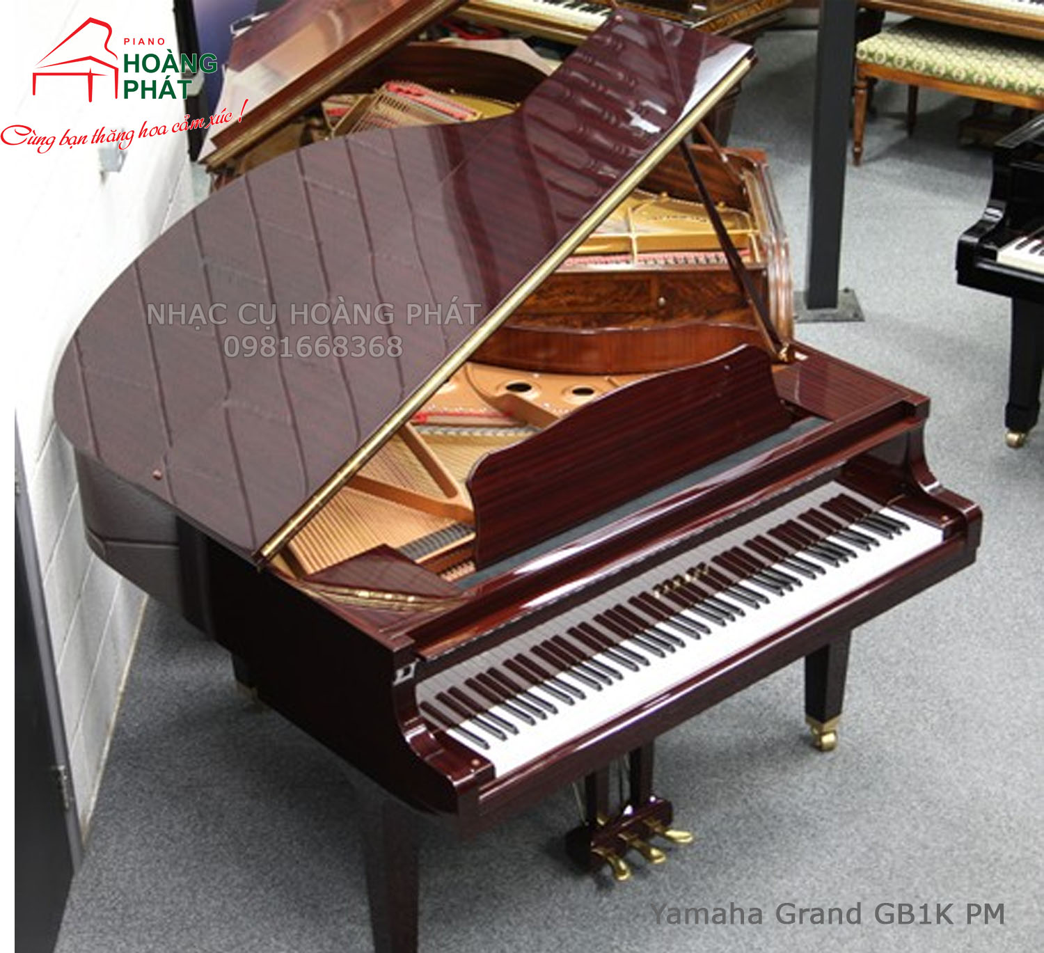 Yamaha Grand GB1K PM