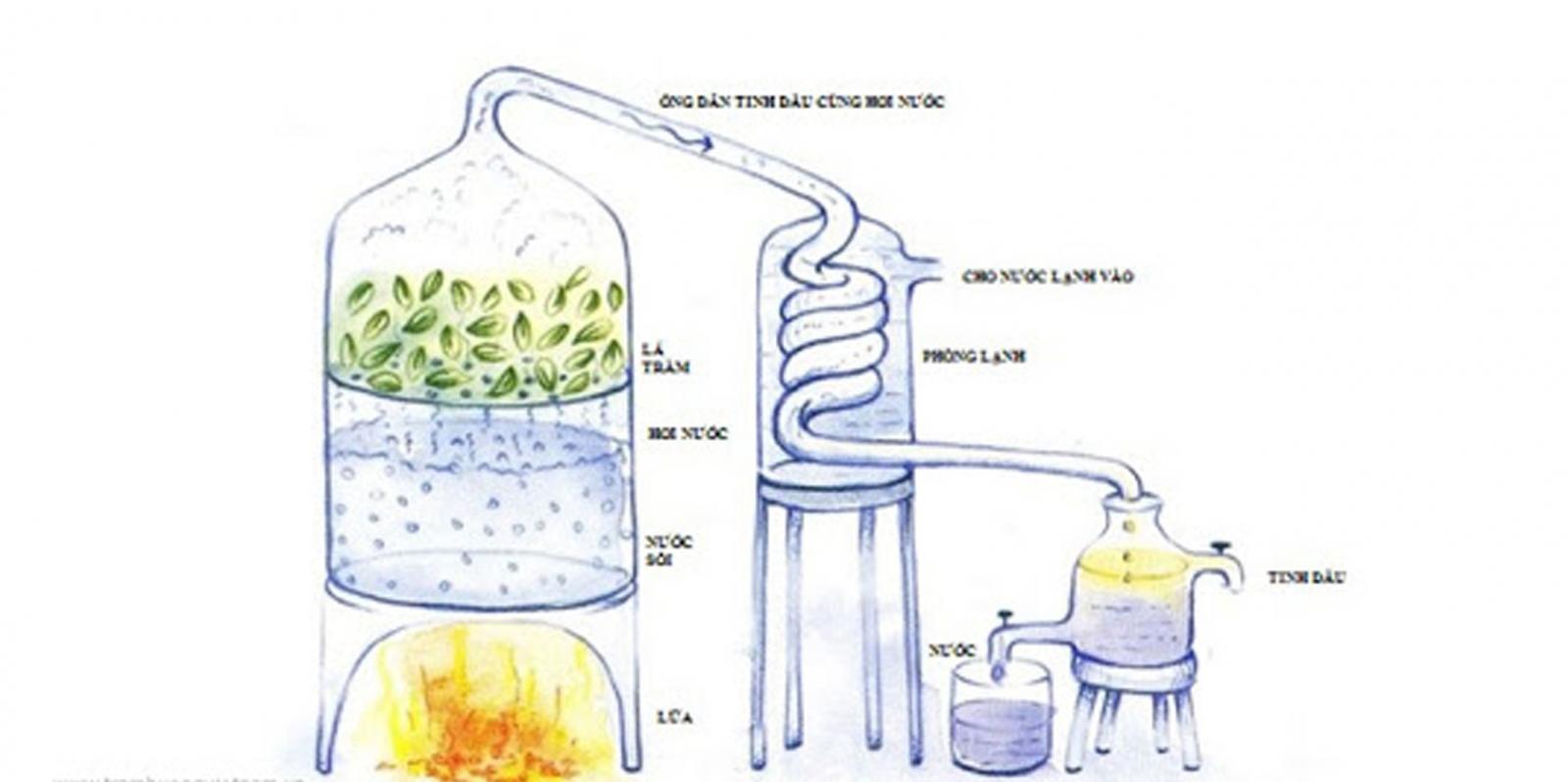 Phương pháp chiết xuất lôi cuốn hơi nước