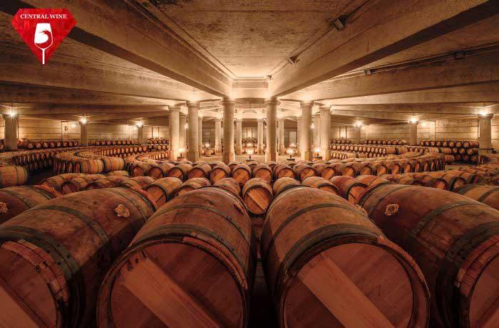 Hầm rượu nhà ChâteauxLafite-Rothschild với nhiều Fine Wine