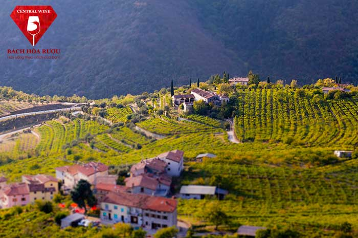 Vùng đất Valpolicella - Ý