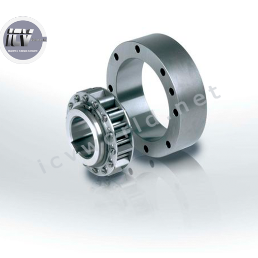 clutch-bearing-series-rsci-20-130