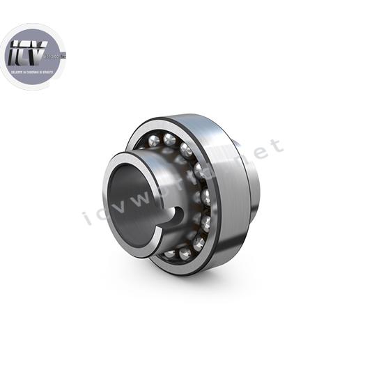 self-aligning-ball-bearing-1300-series