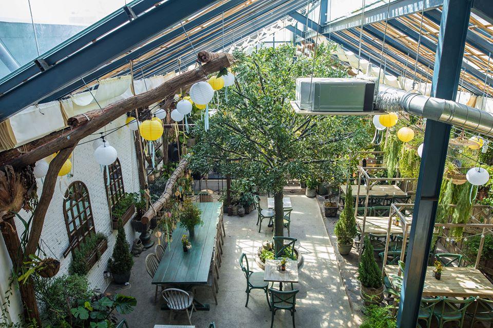 Cách trang trí quán cafe ít tôn kém nhất là tận dụng ánh sáng tự nhiên