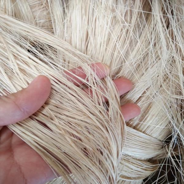 Đây là sợi của cây gai dầu dùng làm nguyên liệu