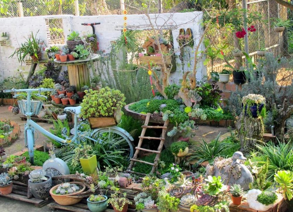 Khu vườn đầy đủ các loại của bác nông dân, vừa giản dị vừa rất có nét sáng tạo