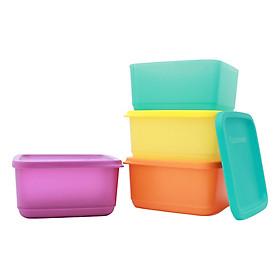 Bộ 4 hộp trữ đông Rainbow Freezermate 650ml ( hàng tặng)