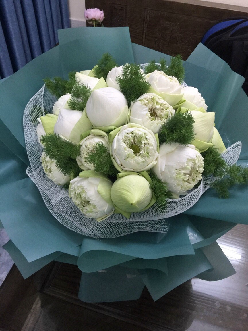 Bó hoa sen 23