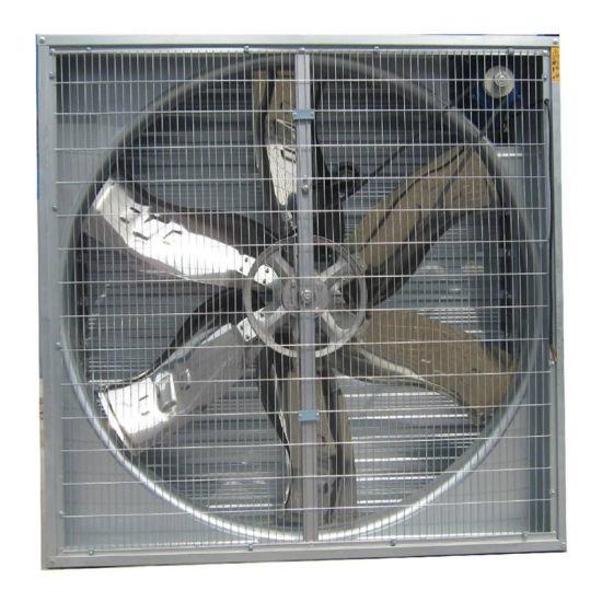 Quạt thông gió vuông Winton 800x800x400