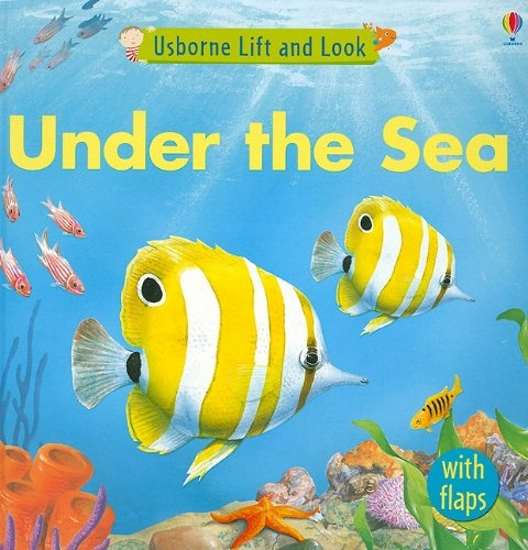 Lift and look Under the Sea