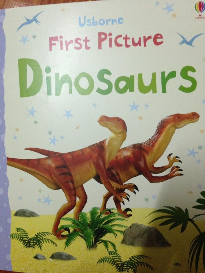 FIRST PICTURE DINOSAURS