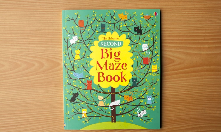 The Usborne second BIG MAZE BOOK