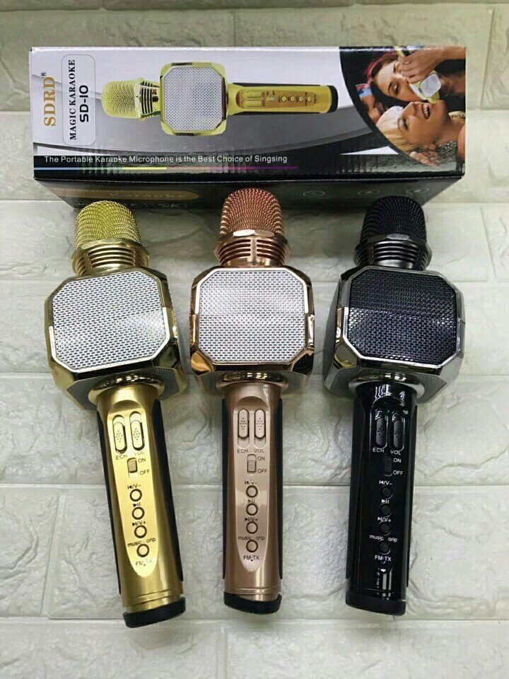 Kết quả hình ảnh cho Mic hát karaoke SD-10