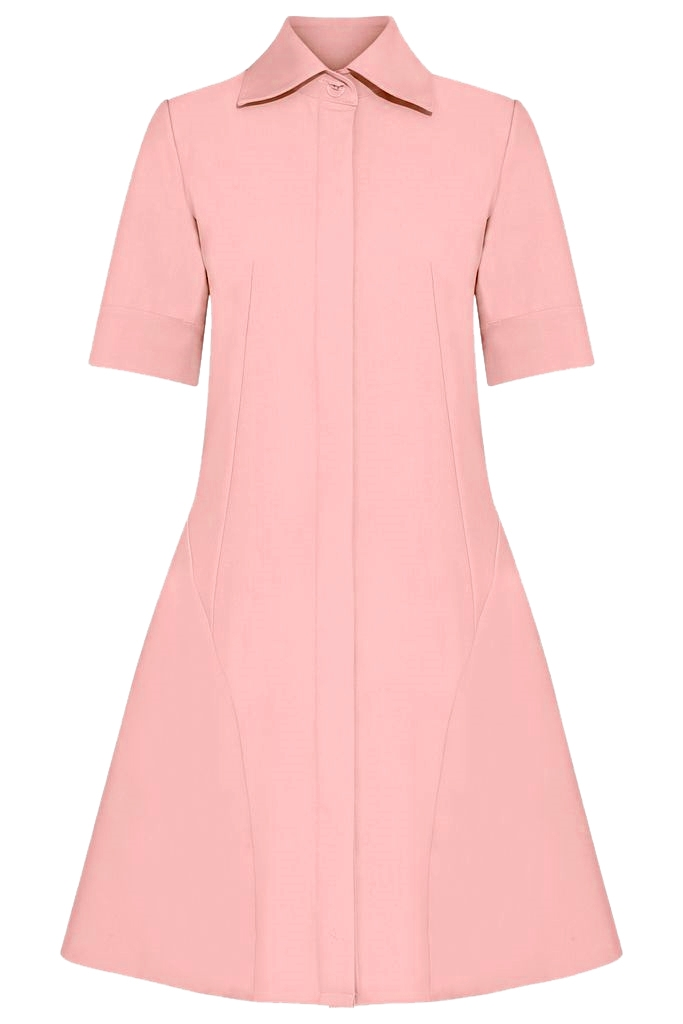 Liv Shirt Dress/ Flamingo