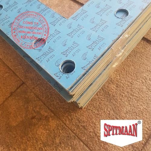 Gia công gioăng đệm phi tiêu chuẩn từ tấm bìa Spitmaan AF120 IMG02