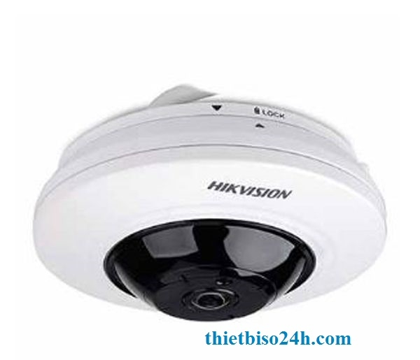 Camera IP Hikvision  DS-2CD2955FWD-IS