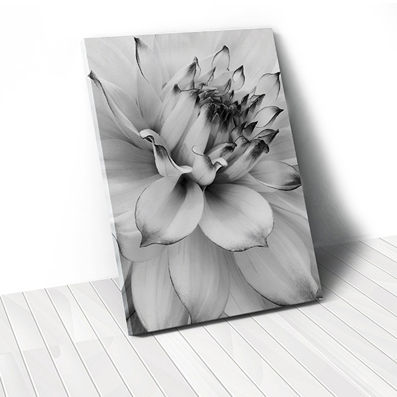 Tranh canvas Black & White Flower