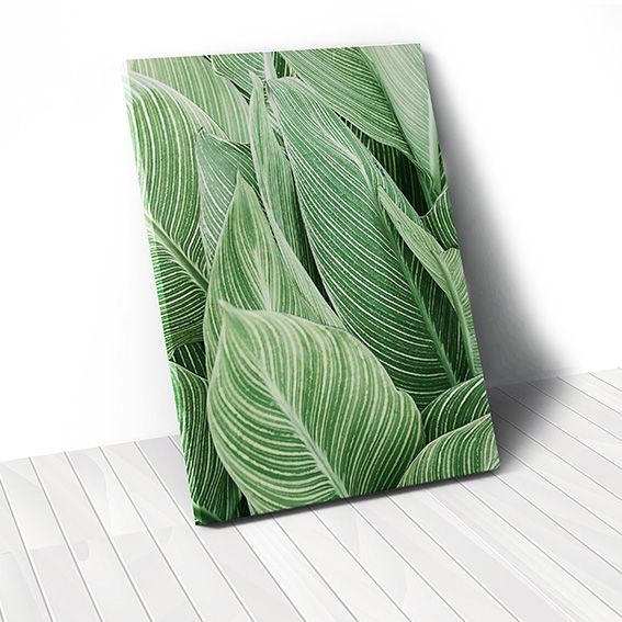 Tranh canvas Green Leaves, Botanical