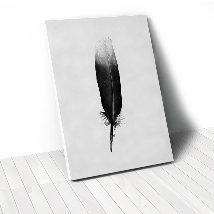 Tranh Black Feather
