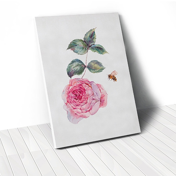 Tranh canvas Watercolor Rose Flower, Bee