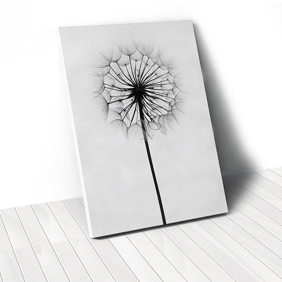 Tranh canvas Dandelion Flower, Black & White
