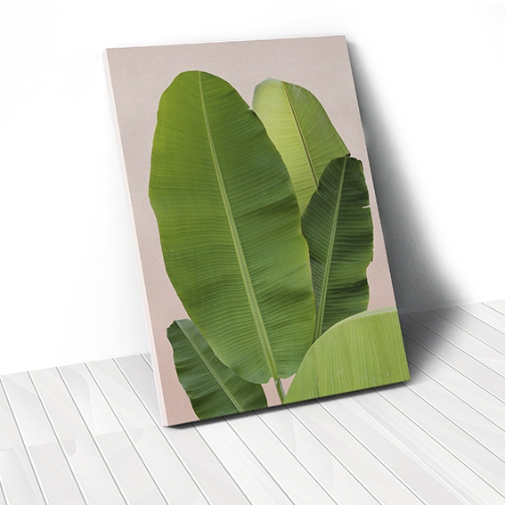 Tranh canvas Banana Leaves, Pink