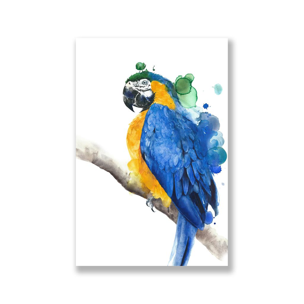 Tranh Parrot watercolor painting, yellow, blue SN0089