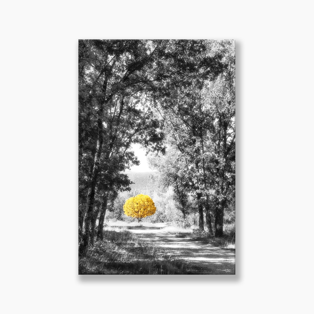 Tranh Beautiful forest, Yellow tree, Black and White