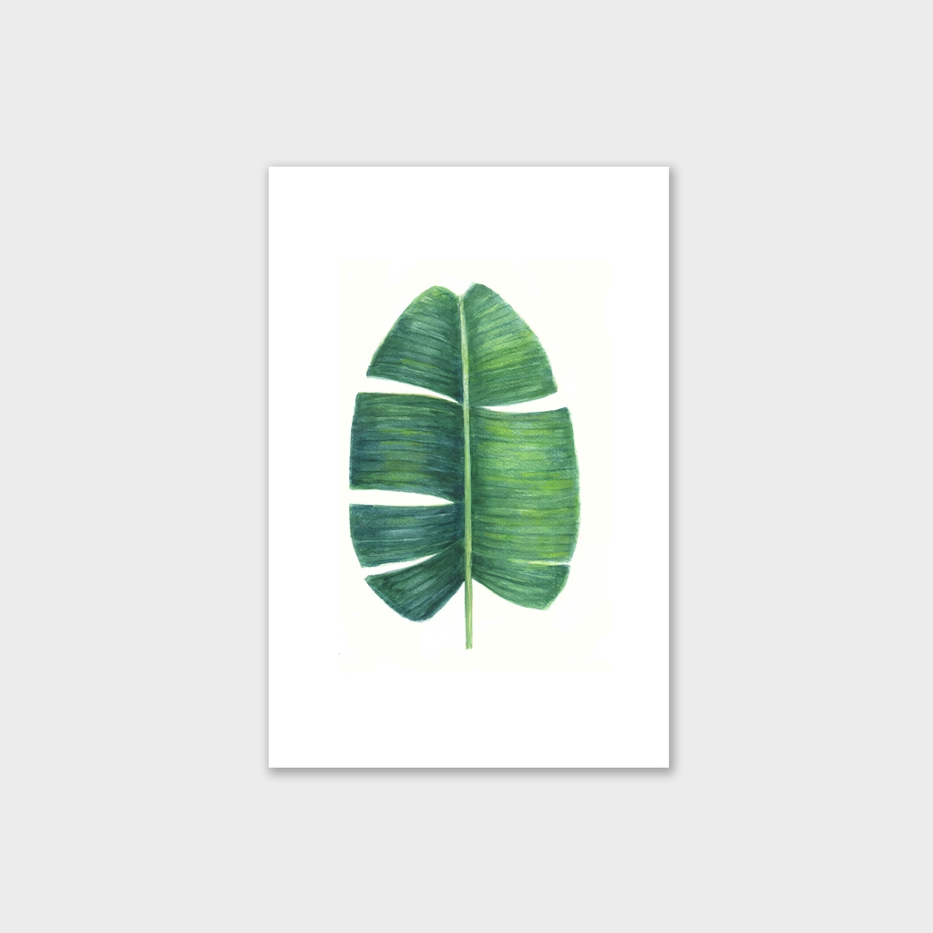 Tranh Banana leaf, botanical