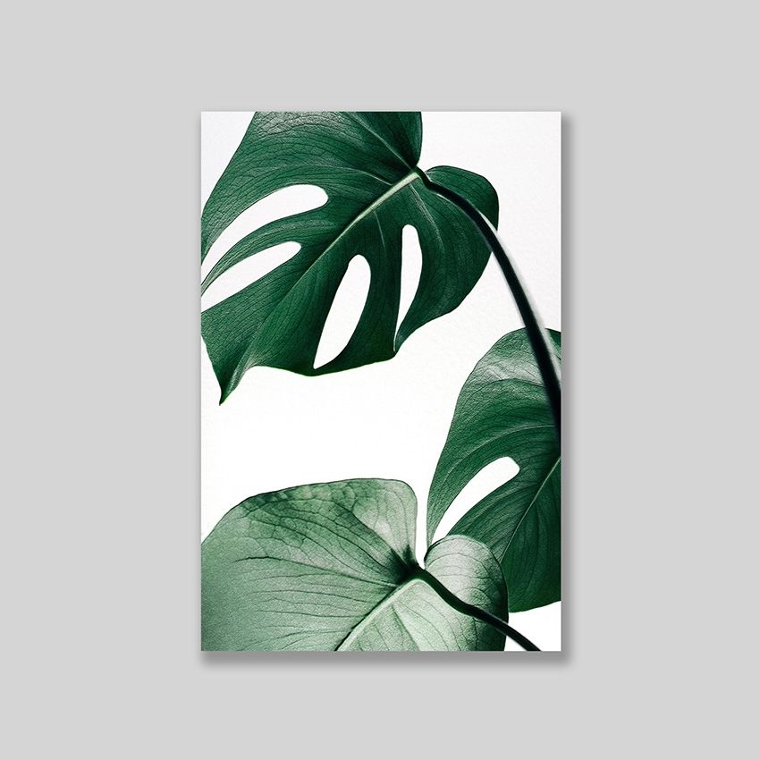 Tranh Monstera leaves
