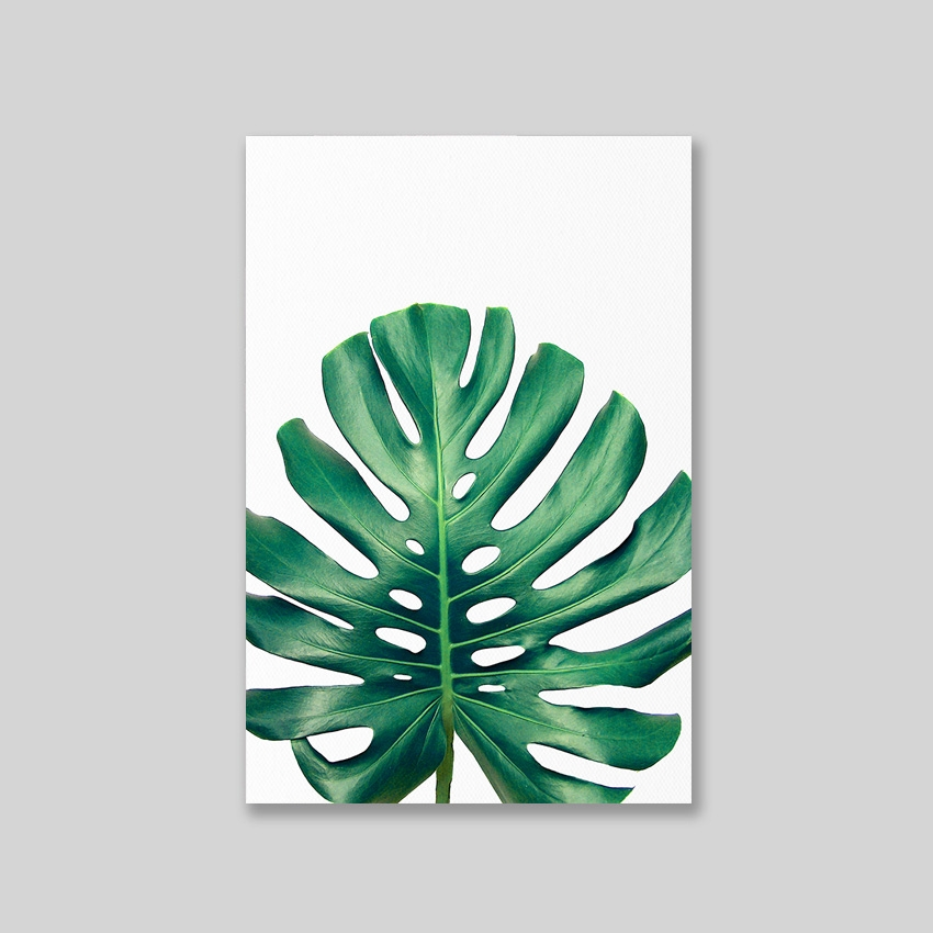 Tranh Monstera leaf 02