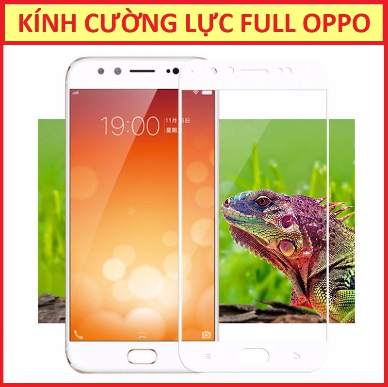 CƯỜNG LỰC FULL OPPO R9S PLUS