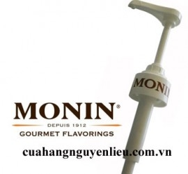 Pump Syrup Monin