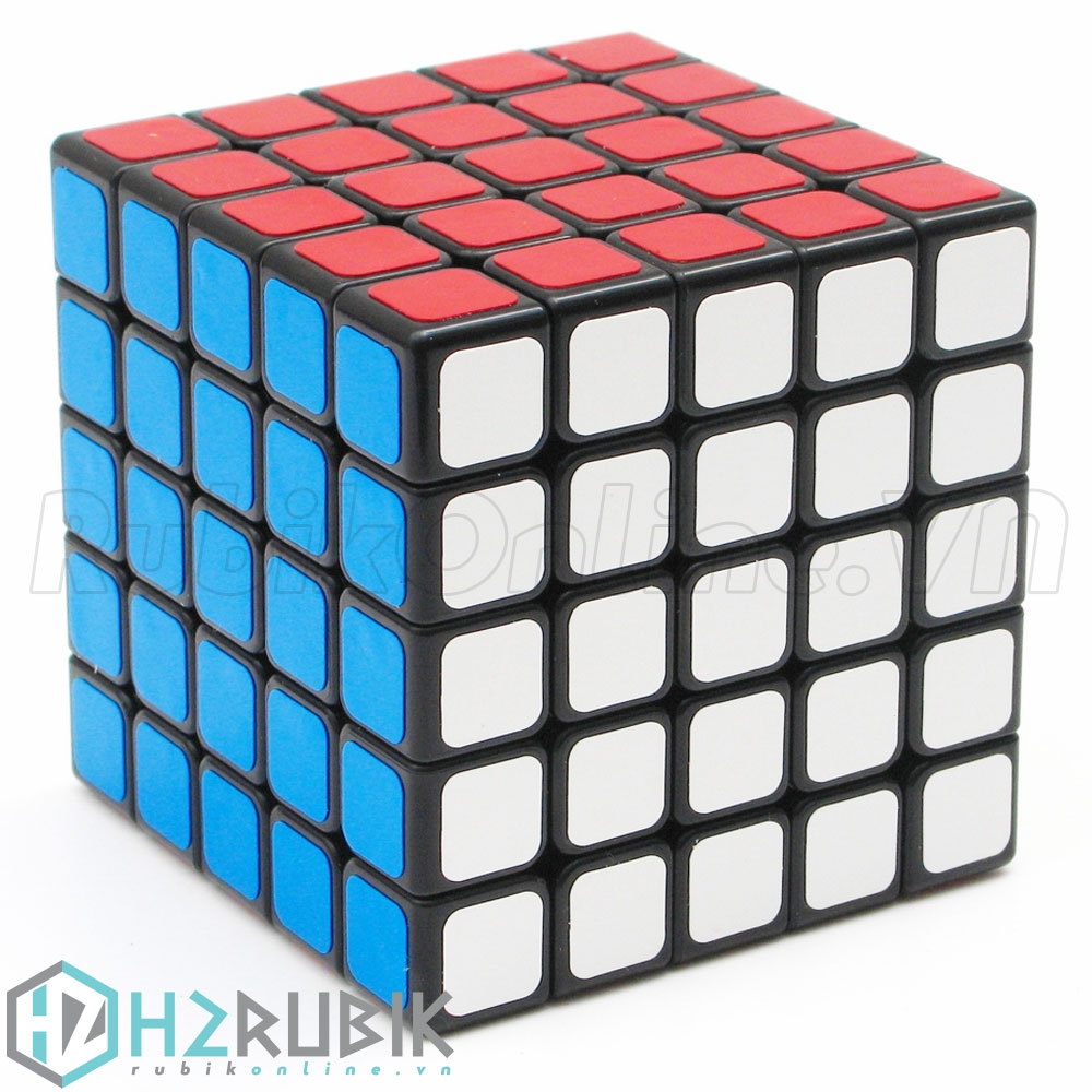 ShengShou 5x5x5 Linglong mini