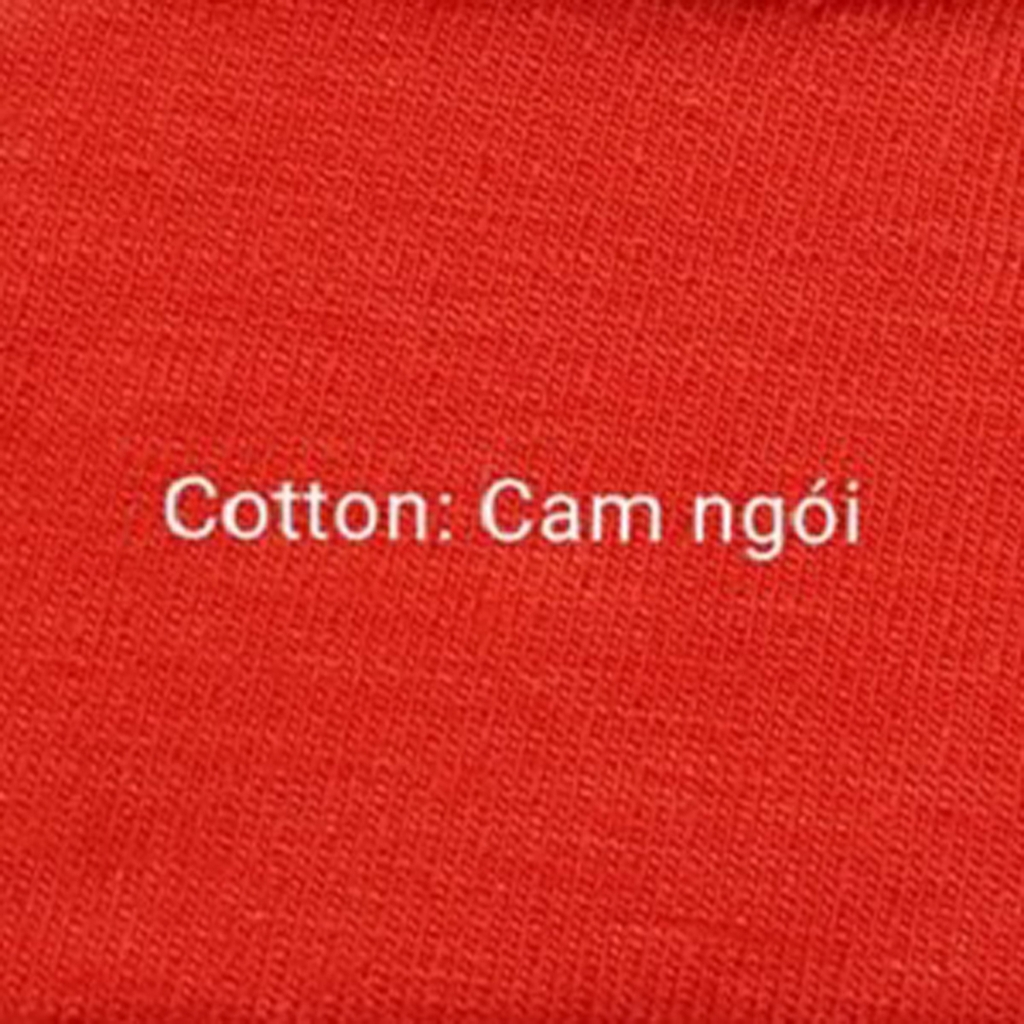 Cotton Cam ngói