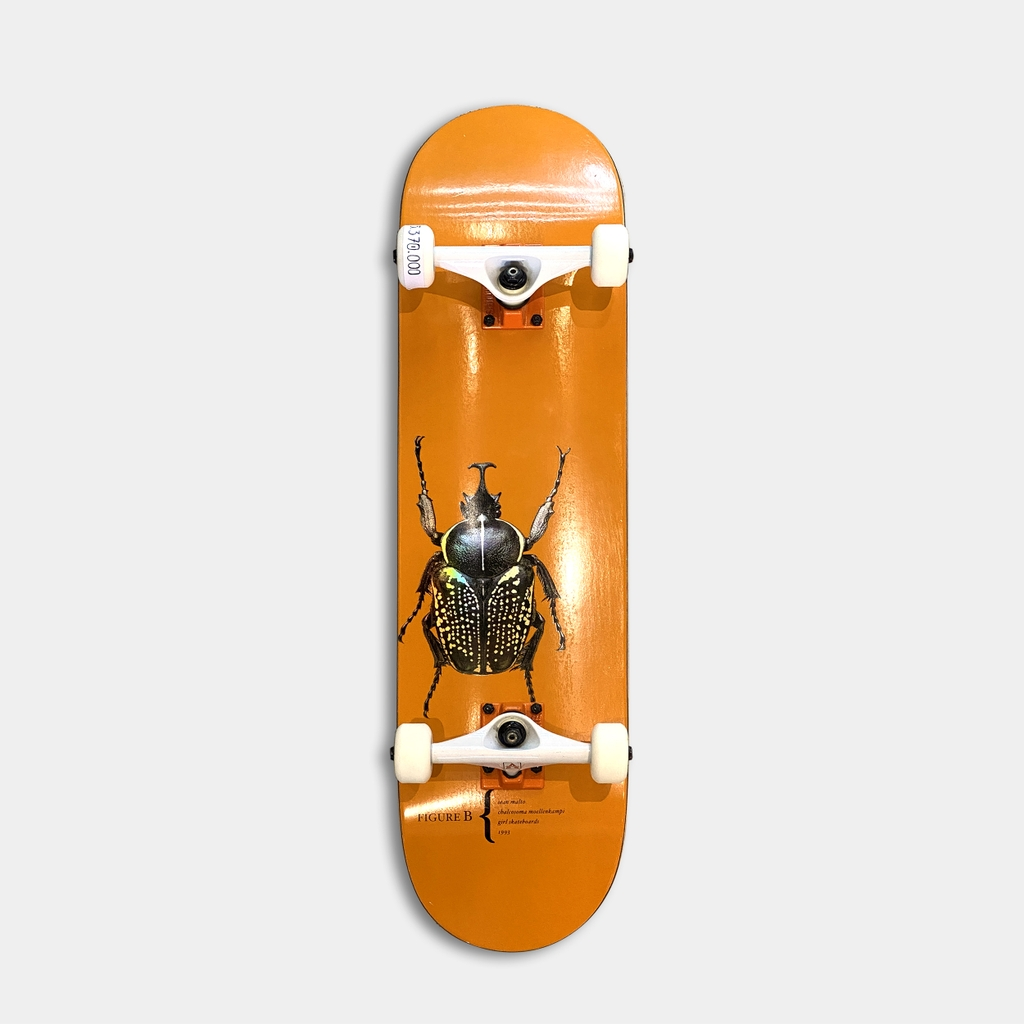 GIRL MALTO BEETLES V2 DECK 8.0 CUSTOM COMPLETE