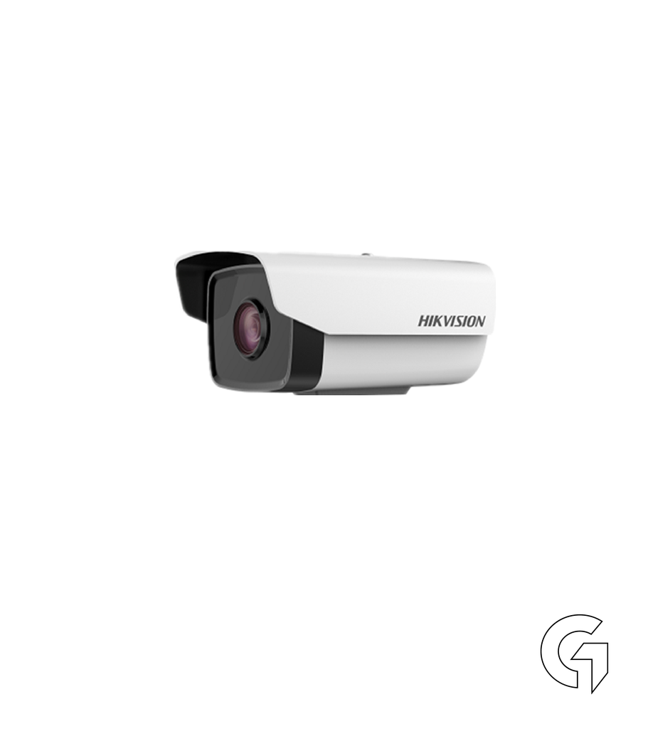 Hikvision DS-2CD2T21G0-IS
