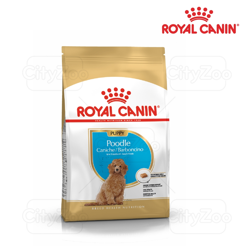 Royal Canin Poodle Junior 1.5kg