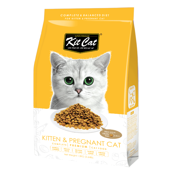 Kit Cat Kitten & Pregnant (Healthy Growth) Dry Cat Food