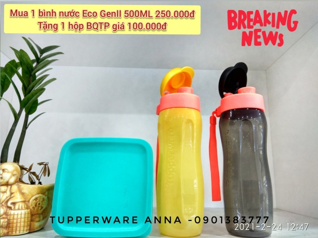 Bình Eco Bottle Gen II 500ml