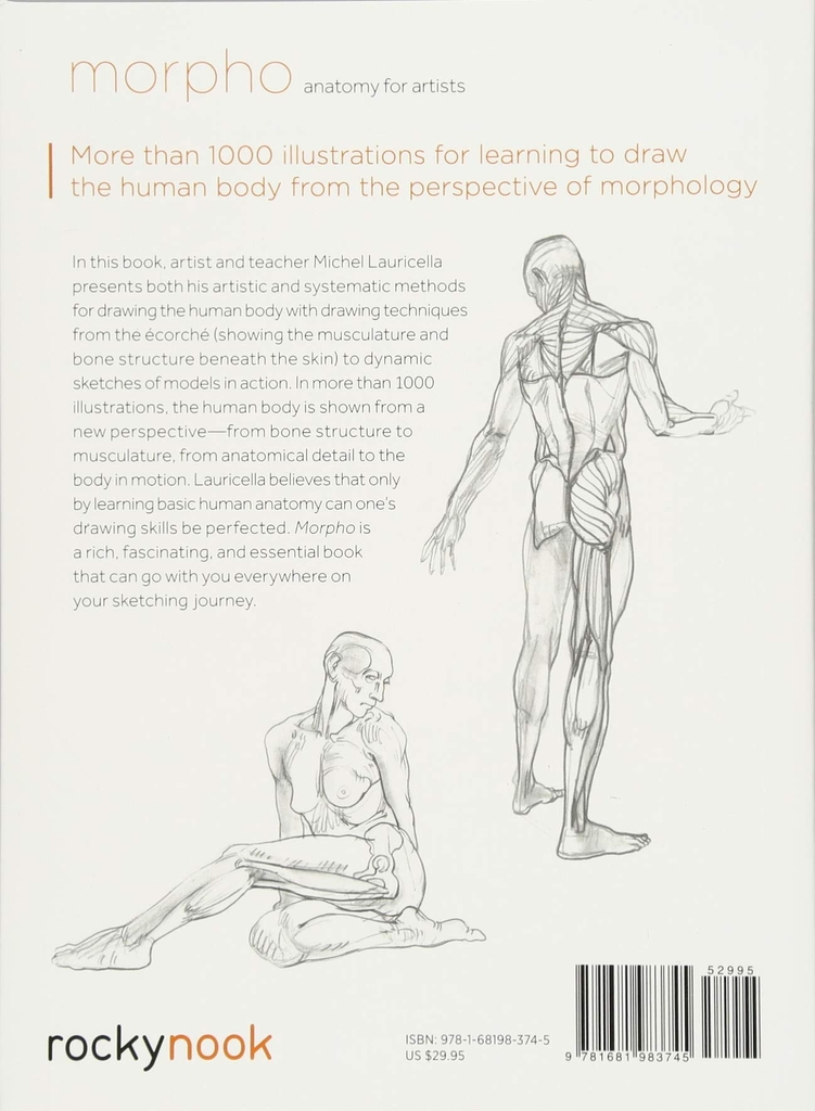 Morpho: Anatomy for Artists