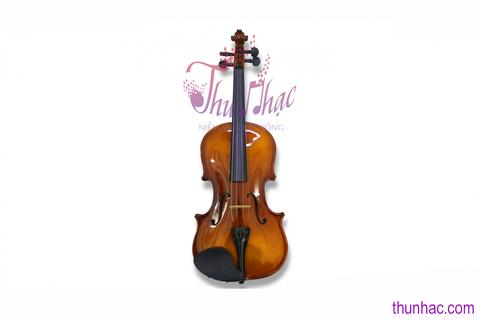 Địa chỉ bán đàn violin Matro VNuy tín tại TPHCM