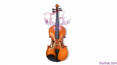 Mua đàn Violin Amati giá rẻ tại TP. HCM