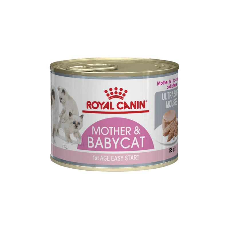 Pate mèo Royal Canin - Mother & Baby Cat - 195g