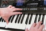 Roland E-A7 Expandable Arranger Keyboard 14