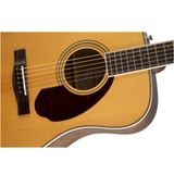 Guitar Fender PM-1 Standard Dreadnought_3