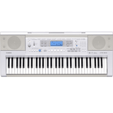 Organ Casio CTK-810IN