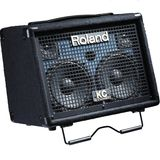 Roland KC-110 Stereo Keyboard Amplifier _ 1