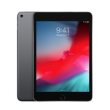 iPad Mini 5 Gray 256GB