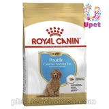 sp1726 - Royal canin Poodle Junior 500g