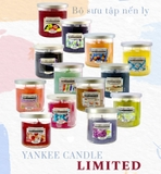 BST NẾN LY TRÒN YANKEE CANDLE LIMITED